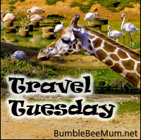 Travel Tuesday Bumble Bee Mum